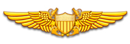 Navy Flight Officer Wings